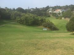 Rona Park 3 (rona.h) Tags: ronah 2019 march ronapark park torbay stredwickdrive auckland stredwickdrivestormwater cashelplace northcross stredwickreserve