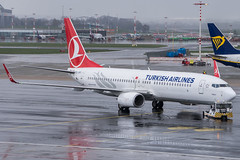 TC-JVO (Kilian Feßler) Tags: hamburgairport b737800 b737 boeing turkishairlines