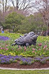 IMG_5592 (Roger Kiefer) Tags: dallas arboretum flowers outdoors beauty nature landscape