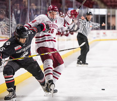 UMass Hockey vs. Northeastern 1-8 (dailycollegian) Tags: umass hockey ice college sports mullins center minutemen northeastern win east cale makr makar carolineoconnor