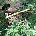 2004-08-20_10-56-29_anon Powe_IMG_3646