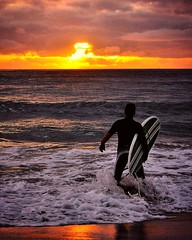 Catching the first wave (missgeok) Tags: surfing surferwithboard surfer sunrise cronullabeach beach cronulla colours warm morning surf outdoor newsouthwales australia sydney beautiful goodmorning ocean weather clouds sky sand golden waves horizon firstwave surfboard person one fierysky