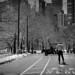 NYC22_0363 (Cecilia ♥ Rey) Tags: street bnw nyc centralpark skate
