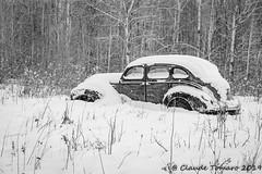 CT Boneyard-1 (Claude Tomaro) Tags: boneyard cardinal ontario canada claude tomaro meetup shutterbug classic car winter snow