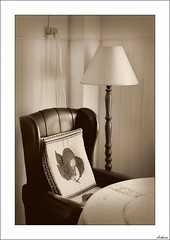 Testigos de tu ausencia (V- strom) Tags: recuerdos memories homenaje homage sepia monocromático luz light nikon nikond700 nikon24120 vstrom anniversary aniversario texturas textures interiorismo interiordesign sillón lámpara armchair lamp