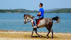 Βονιτσα DSC02976 (omirou56) Tags: 169ratio sonydschx60v horse greece αλογο θαλασσα ουρανοσ λοφοι ελλαδα
