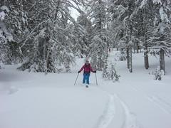 Almenparadies & Pulvergenuss im Ahrntal - Jänner 2019 (Globo Alpin) Tags: ahrntal skitouren winter 2019 primus fotowinter