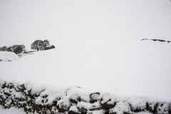 remotely white #148 (alderson.yvonne) Tags: snow white out winter co durham teesdale chill d7200 nikon