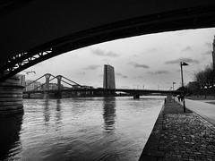Frankfurt, River Main view to EZB (rgiw) Tags: deutschland city street blackwhite bw schwarzweiss sw colour farbe stadt monochrome skyscraper wolkenkratzer strasse building gebäude hessen frankfurt blackandwhite bauwerk architektur architecture