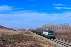 ecco-rail 193 242, Nickelsdorf (Paha Bálint) Tags: ell br193 siemensvectron vectron freighttrain train güterzug austria