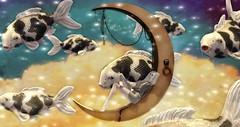 Flight of the fish (Felice Nightfire) Tags: surreal fish dream secondlife anc