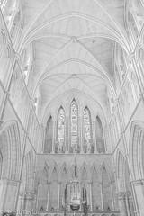 Cathedral (Scrufftie) Tags: churchofengland highkey fujifilmxh1 cathedral church handheld blackwhite style bw mono southwark fuji fujinonxf1855mm