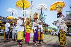 (kuuan) Tags: voigtländerheliarf4515mm manualfocus mf voigtländer 15mm aspherical f4515mm sonynex5n nex5n superwideheliar bali indonesia purapenataransasih pejeng odalan temple festival balinese ceremony ladies procession ceremonialumbrella