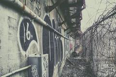 16. (Paul B0udreau) Tags: graffiti canada ontario paulboudreauphotography niagara d5100 nikon nikond5100 toronto city winter photoshop layer nikkor1855mm metalbarrel fence