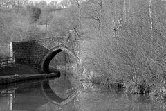 Bridge53 (Tony Tooth) Tags: nikon d7100 nikkor 50mm f18g bridge canal caldoncanal reflection bw blackandwhite monochrome froghall staffs staffordshire waterway