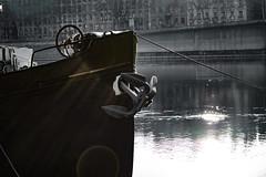 boat (revoli photo) Tags: lyon slack slackline bateau soane rhone parc song city sun bird