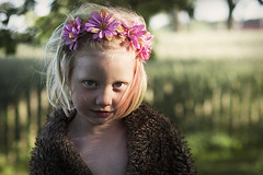 Summer evening (dennywallden) Tags: repotage artistic art outdoor kid portrait people canon face happy 5dsr fur flowers garden shadows model hair sun sunset sunlight child collar love