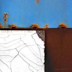 fiori di ferro (pamo67) Tags: pamo67 ironflowers composizione ruggine rust ferro truciolato chipboard composition formica crepe cracks rift azzurro linee lines geometrico geometric old vecchio pasquale mozzillo datato dated
