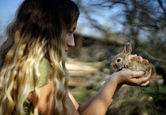 (mirkakonarikova) Tags: pancolar 50mm vintage manual a7 bunny