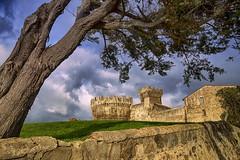 La Rocca di Populonia / The Rocca di Populonia (Eugenio GV Costa) Tags: approvato costa etruschi populonia livorno tuscany italy rocca castello etruscan castle albero tree paesaggio