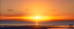 Vastness (Artistry & Love) Tags: aus australia blue celestial downunder ethereal fineart heavenly landscape magic mysterious mystical nature scene scenery spirit spiritual water bongaree bribieisland sunset sun bird orange