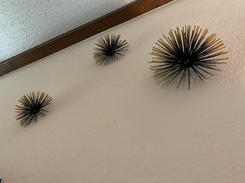 Wall urchins