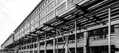 _DSC8335-3 (durr-architect) Tags: dutch design week 2018 eindhoven nl sustainable innovation fashion strijp klokgebouw ketelhuisplein piet hein eek recycle furniture print molten bridge steel light location strijps robotics company mx3d