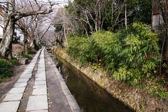 SDQ_1247 (koyaman3422) Tags: 京都 kyoto sigma sdquattro 1770mm 哲学の道