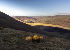 Forest of Bowland (l4ts) Tags: landscape lancashire forestofbowland aonb totridge moorland lightandshadows