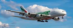 Emirates Airbus A380 (Thomas Wraight) Tags: a380 airbusa380 doubledeckairliner widebody superjumbo airbus airliner passengerairliner photography canon canon7dii heathrow heathowairport londonheathrow egll london greaterlondon england greatbritian unitedkingdom europe aviation aircraft flight jet emirates
