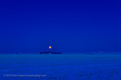 Setting of the Snowy February Moon (Feb 18, 2019) (Amazing Sky Photography) Tags: february fullmoon snowmoon supermoon cold dawn farm field morning setting snow