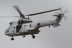 AS332B1 HD21-11 803-11 803Esc (spbullimore) Tags: rijen gilze 2018 aproc aire del ejercito force air spanish spain escuadron squadron 803 80311 hd2111 hd21 as332b1 as332 puma aerea fuerza espanola