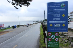 IMG_9756 (mudsharkalex) Tags: california pacificgrove pacificgroveca montereybaycoastaltrail sign signs