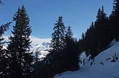 DSCF3779 (Laurent Lebois ©) Tags: laurentlebois france nature montagne mountain montana alpes alps alpen paysage landscape пейзаж paisaje savoie beaufortain pierramenta arèchesbeaufort
