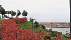 El mirador (eitb.eus) Tags: eitbcom 30487 g1 tiemponaturaleza tiempon2019 paisajes bizkaia portugalete juantxuaberasturi