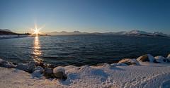 Tromsö 2019 (559 von 699) (pschtzel) Tags: 2019 nordlicht tromsö