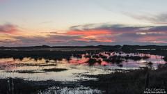 reflet du soir sur la palud inondée, derrière la dune de la Baie d'Audierne (Paul Kerrien) Tags: dune soir reflet rivage finistere bzh bretagne paysage bigouden crépuscule