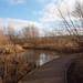 2019_01_0129 (petermit2) Tags: centenaryriversidereserve centenaryriverside naturereserve rotherham southyorkshire yorkshire yorkshirewildlifetrust ywt wildlifetrusts wildlifetrust
