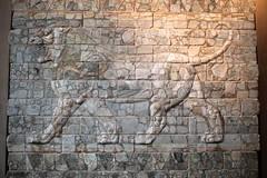 Frieze of Lions (Thomas Schirmann) Tags: friezeoflions frisedeslions darius iran perse louvre musée palaisdedarius lion céramique glaçure museum