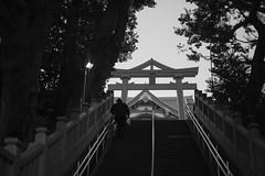 DSCF8873.jpg (Ryo(りょう)) Tags: tokyo megurofudo bw zhongyiopticsspeedmaster35mmf095ii monochrome japan fujifilmxe3