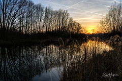 A beautiful evening (Marc Haegeman Photography) Tags: ghent gent bourgoyen water serene eveningmood sunset springtime primavera trees landscapephotographybymarchaegeman nature bourgoyenossemeersen nikond850
