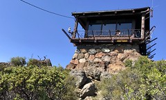 #MtTamalpais #Hike (Σταύρος) Tags: mounttamalpais barbwire treehouse mttamlookout hike hiking marin californië california cali cal californie top mounttampalis mttamalpais sunnyday beautifulday marincounty millvalley mountain kalifornien kalifornia καλιφόρνια カリフォルニア州 캘리포니아 주 northerncalifornia カリフォルニア 加州 калифорния แคลิฟอร์เนีย norcal كاليفورنيا