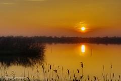 i due soli... the two suns... (giobertaskin) Tags: canon sunset tramonto riflessi riflesso acqua laguna two sole soli due