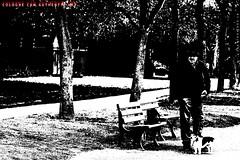 """Lebensabend II"" (Cologne Cam Authentic Art) Tags: art kunst urban city street streetshot streetphoto streetphotography people blackandwhite blackwhite bw schwarzweiss monochrome light contrast bwphotography abstract bonn germany deutschland rhein rhine"