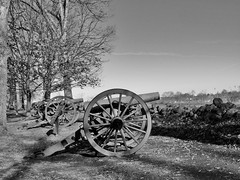 Artillery along Seminary Ridge (George Neat) Tags: blackwhite blackandwhite bw cannon artillery gun trees purcell virginia mcgraw's battery seminary ridge gettysburg american civilwar adams county pa pennsylvania union confederate anv north south unitedstates america army potomac northern history landscape scenic scenery historical battlefield national park monument memorial statue july 1 2 3 1863 george neat patriot portraits usa csa neatroadtrips outside