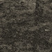 Puddles (Multiple Exposure) 97