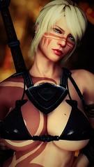 Carmilla - Warrior's Gaze (DiamondbackVIII) Tags: elder scrolls v skyrim carmilla blonde hair blue eyes wolf bikini armor facepaint bodypaint nisetanaka