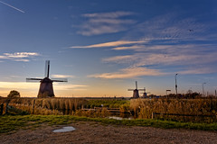 The Seagull (Alfred Grupstra) Tags: windmill sky nature landscape sunset ruralscene cloudsky wind blue field architecture summer old scenics netherlands outdoors agriculture europe cultures