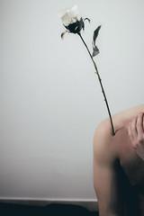 Corps de Fleurs | 1 (_ALBX_) Tags: indoor studio man selfportrait conceptual photography photographer canon canon80d sigma 30mm albxphoto albx art