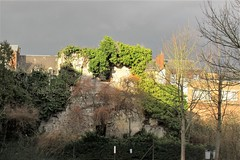 Ancient wall covered with ivy, Rue Basse Marcelle, Namur, Belgium (Paul McClure DC) Tags: namur namen belgium belgique wallonia wallonie ardennes feb2018 historic architecture